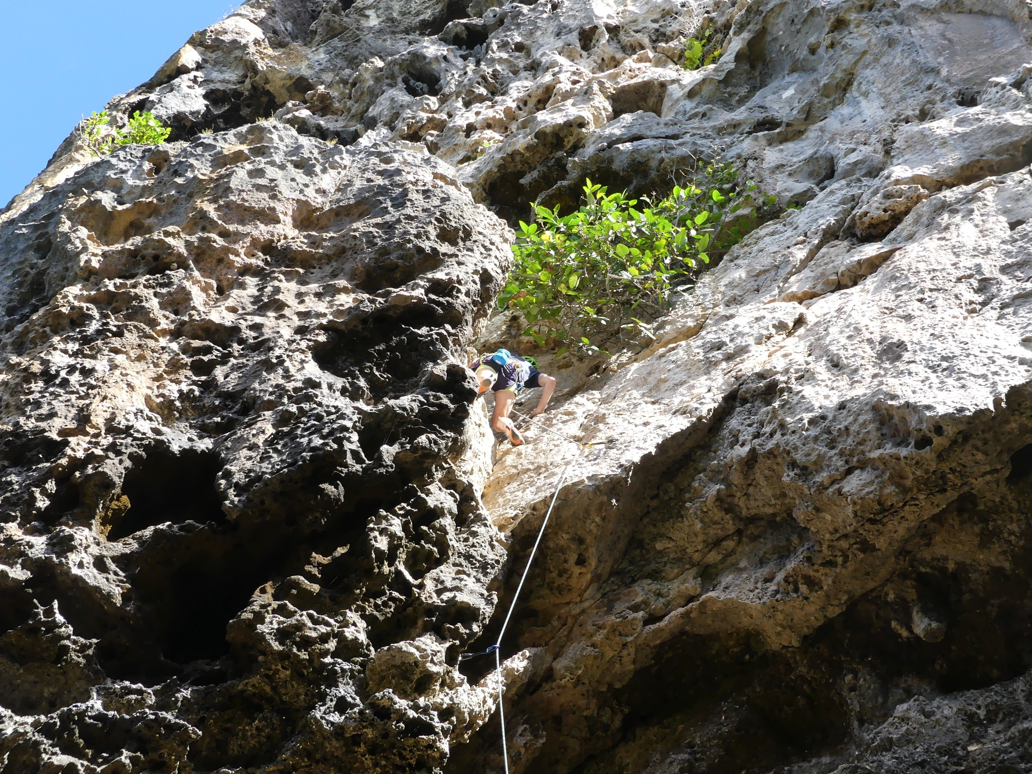 Alexei climbing the easy access pitch (grade 16) on the Whale wall on the first day.